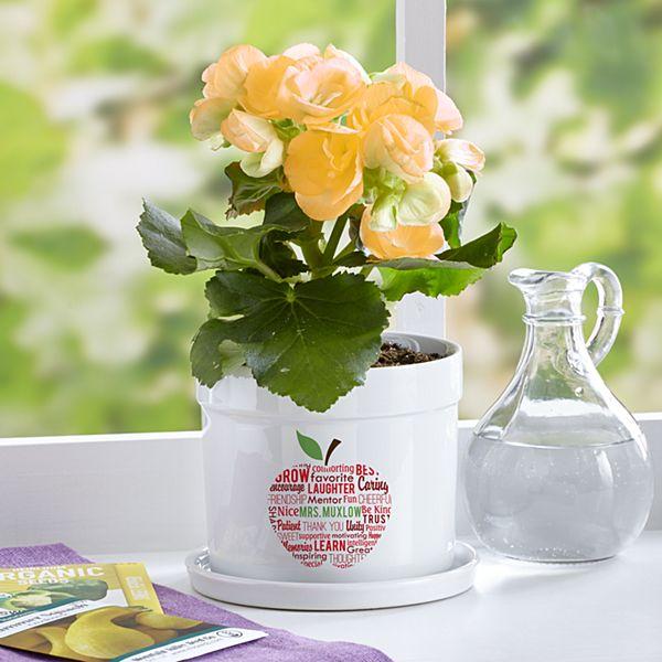 Apple for Teacher Flower Pot