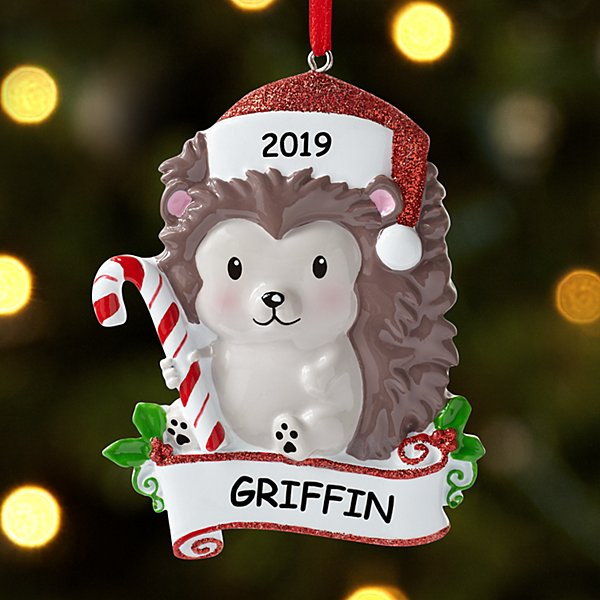Huggable Hedgehog Ornament