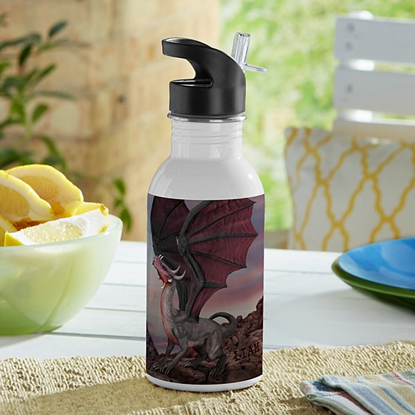 Dragons Water Bottle