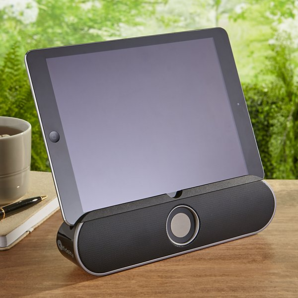 Rollbar Bluetooth Speaker + Stand