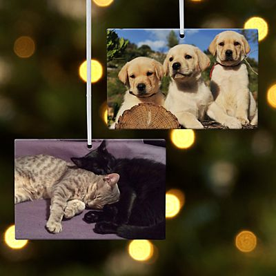 Pet Photo Rectangle Ornament