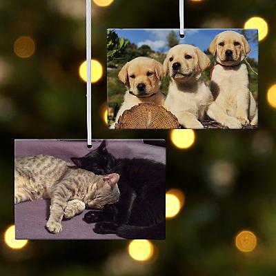 Pet Rectangle Photo Bauble
