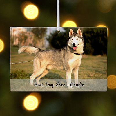 Pets Photo Message Rectangle Ornament