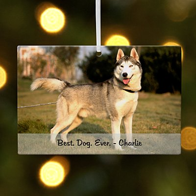 Pets Photo Message Rectangle Ornament