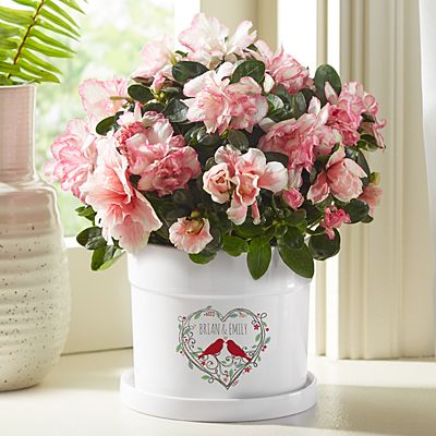 Love Nest Flower Pot