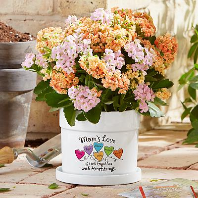 Heartstrings Flower Pot
