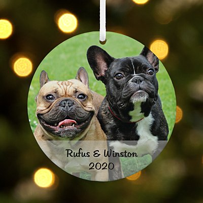 Picture Perfect Pets Photo Message Round Ornament