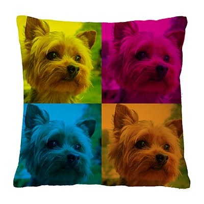 Pop Art Pet Photo Pillow