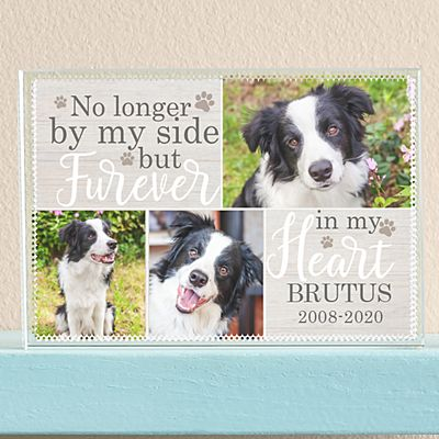 Pet Memorial Photo Glass Block