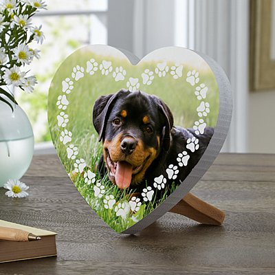Pet Paw Print Photo Mini Wood Heart