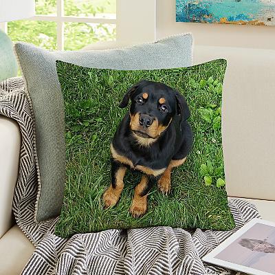My Furry Friend Pet Photo Cushion