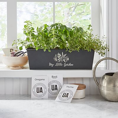 Indoor Herb Growing Kit